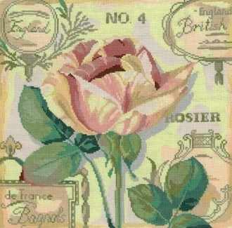 0107 Английская роза (Nitex)