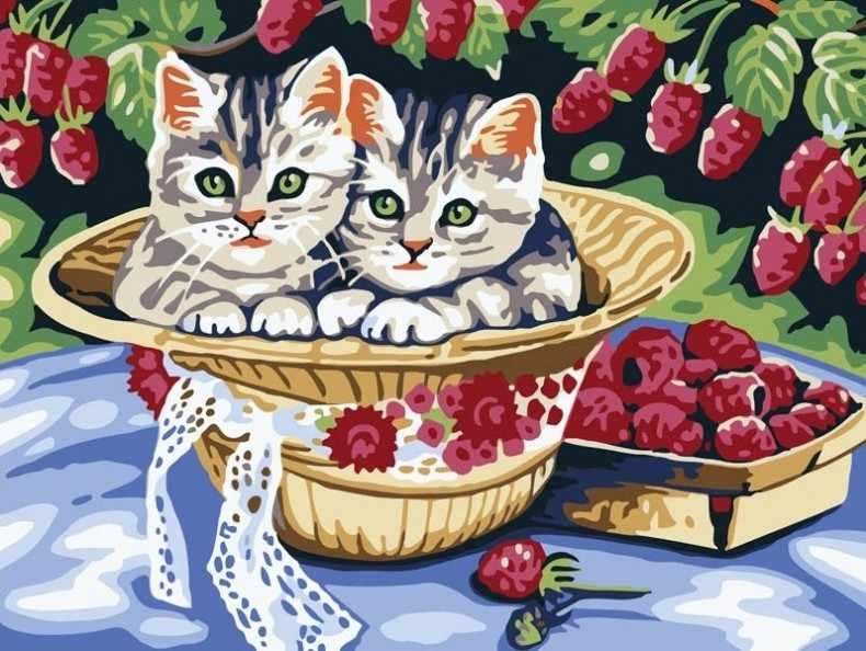 013-CE Котята в саду - раскраска (Белоснежка)