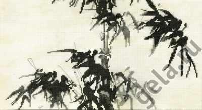 03.018.03 Бамбук (МИ)