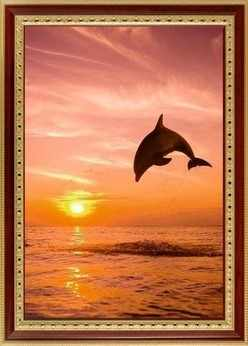 065 Дельфин на закате