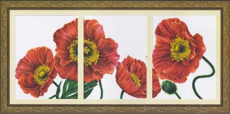 """100407 """"Blooming poppies 2"""" (DOME)"""