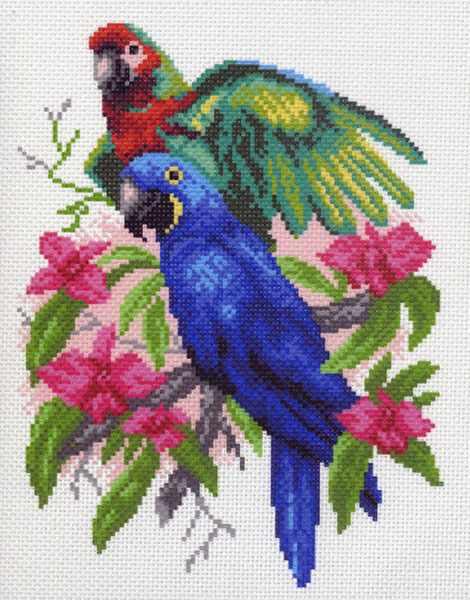 1009 Попугайчики (МП)