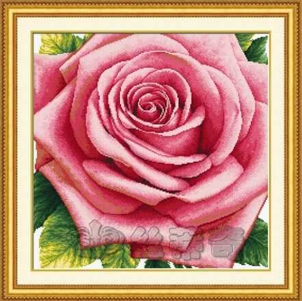 """110811 """"Роза"""" (DOME)"""