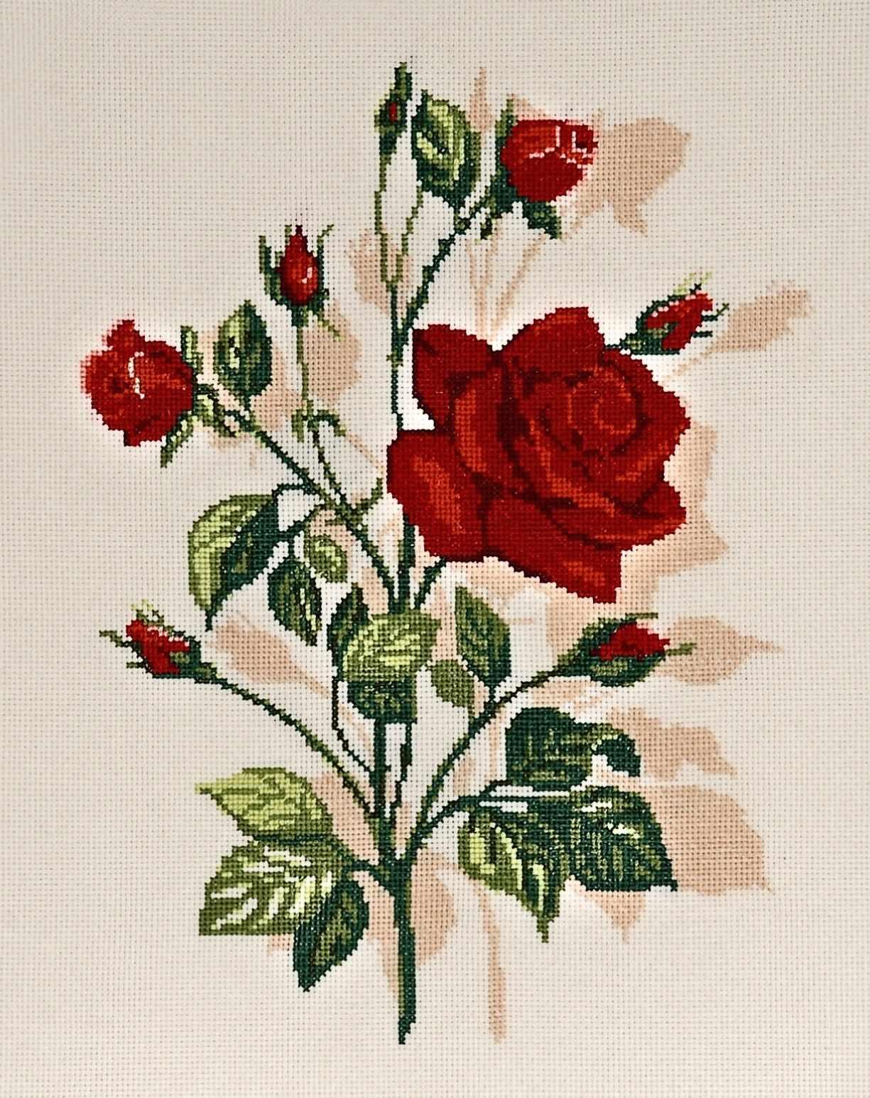 1159 Роза (Alisena)