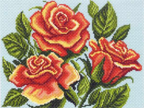 1313 Желтые розы, композиция (МП)