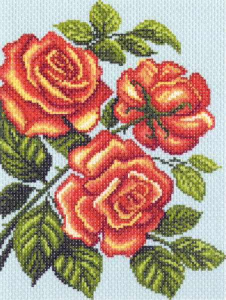 1315 Желтые розы, композиция (МП)