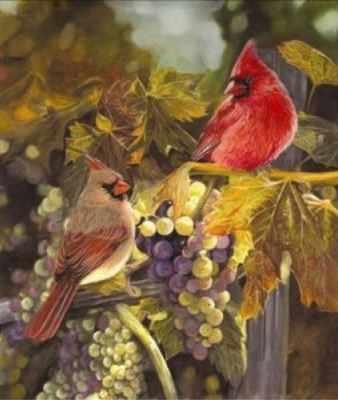 """21758 PLD """"Урожай (две птицы в винограде)"""" - раскраска"""