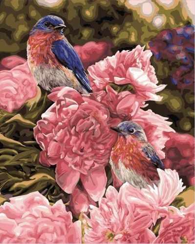 """21765 PLD """"Розовый и голубой"""" -  раскраска"""