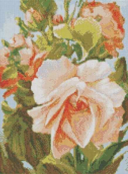 224-ST Роза (Белоснежка)