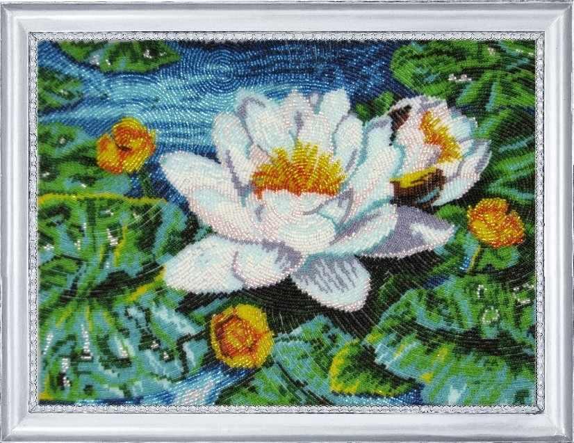 279 Нимфея озерная - Butterfly