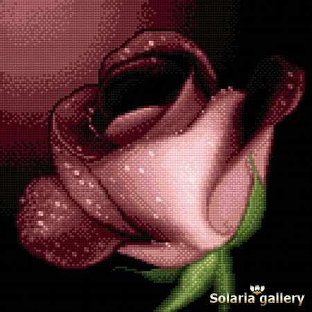 3111-40 Роза для тебя