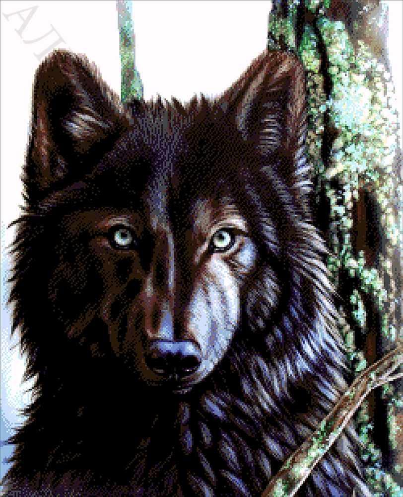 33-2576-НК Канадский волк - набор для вышивания (А. Токарева)