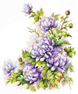 40-58 Хризантемы