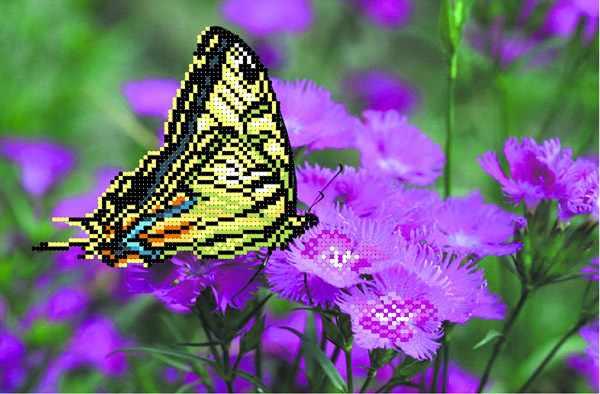 4000 Бабочка на лиловых цветах (МП)