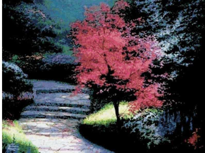 4035-14 Вишневый цвет (Белоснежка)