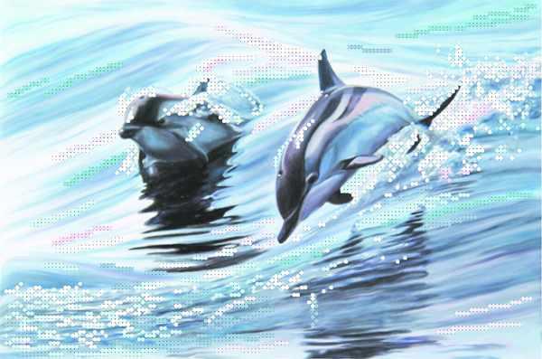 4040 Дельфины - рисунок на шелке (МП)