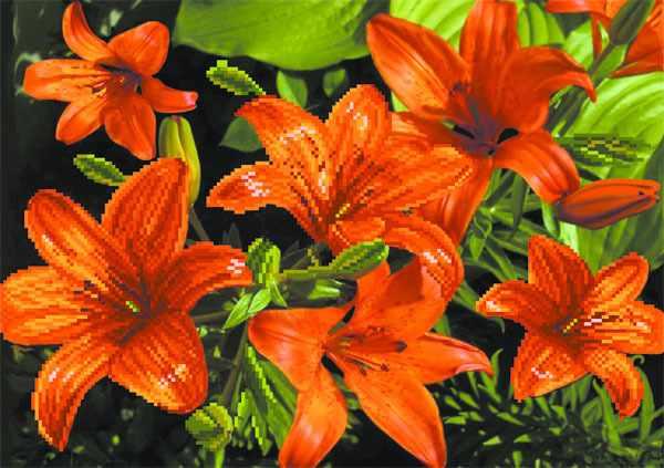 4085 Оранжевые лилии - рисунок на шелке (МП)
