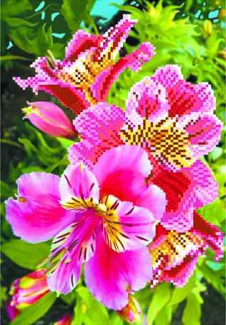 4086 Лилии розовые - рисунок на шелке (МП)