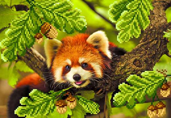 4101 Красная панда - рисунок на шелке (МП)