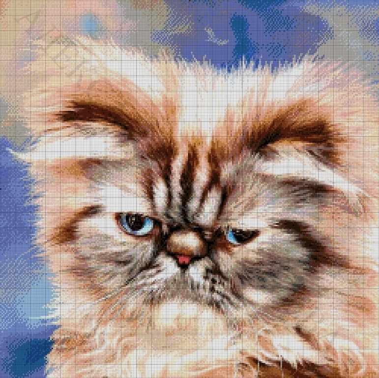 42-2116-НП Персидский кот - набор для вышивания (А. Токарева)