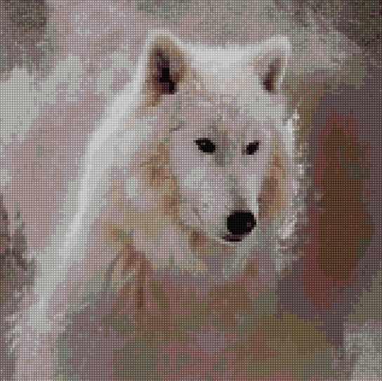 50008 Белый волк - мозаика Anya