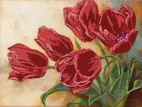 50086 Тюльпаны