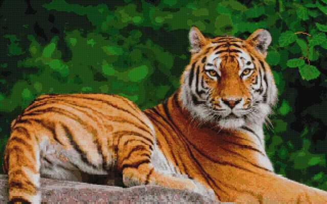 50104 Лежащий тигр - мозаика Anya