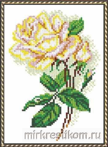 524 Чайная роза