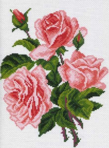 560 Розы - рисунок на канве (МП)