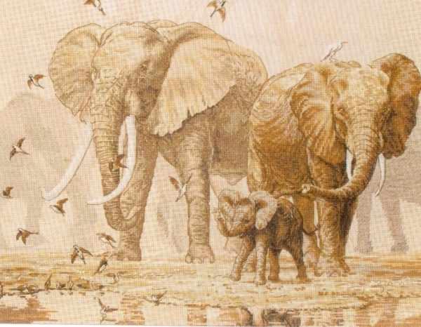 5678-1197 Слоны и голуби MAIA