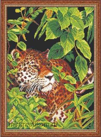620 В джунглях