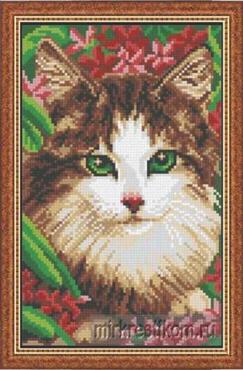 636 Кот в красных цветах
