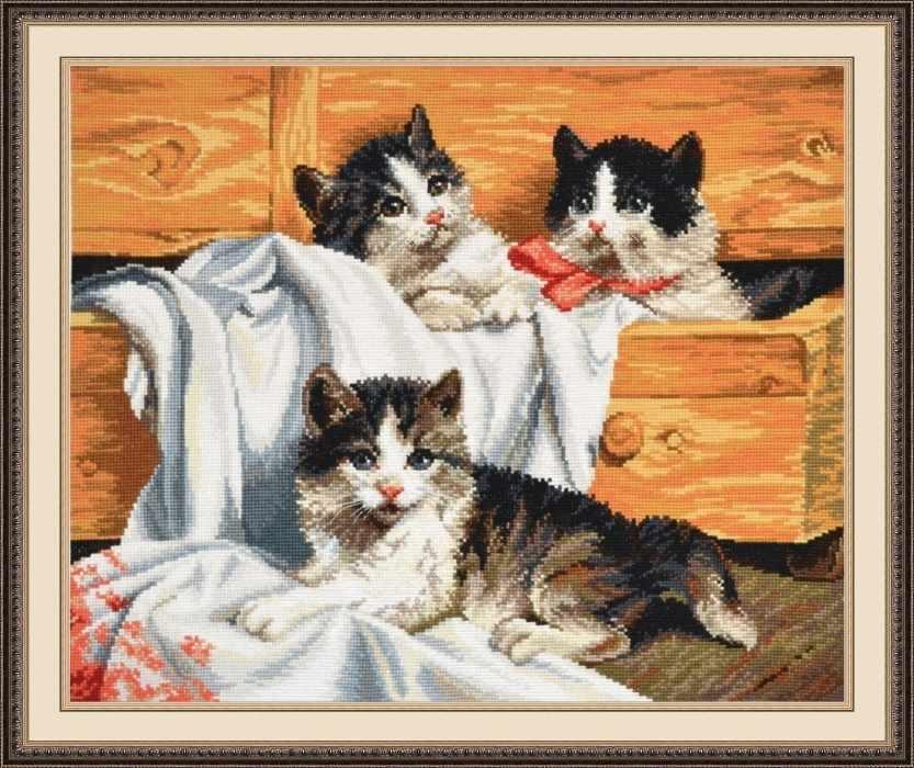674 Котята (Овен)