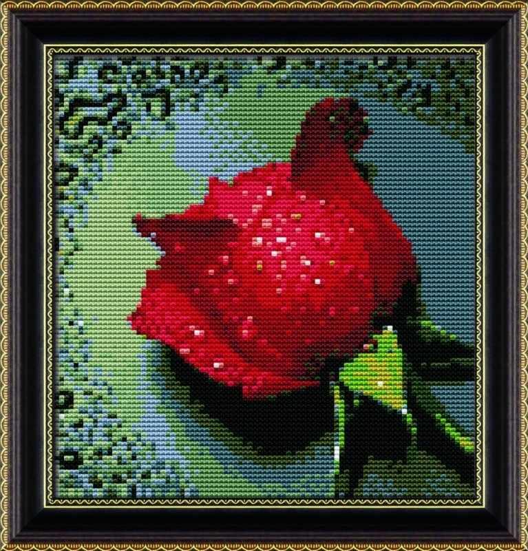 68038 Роса на красной розе (Honey home)