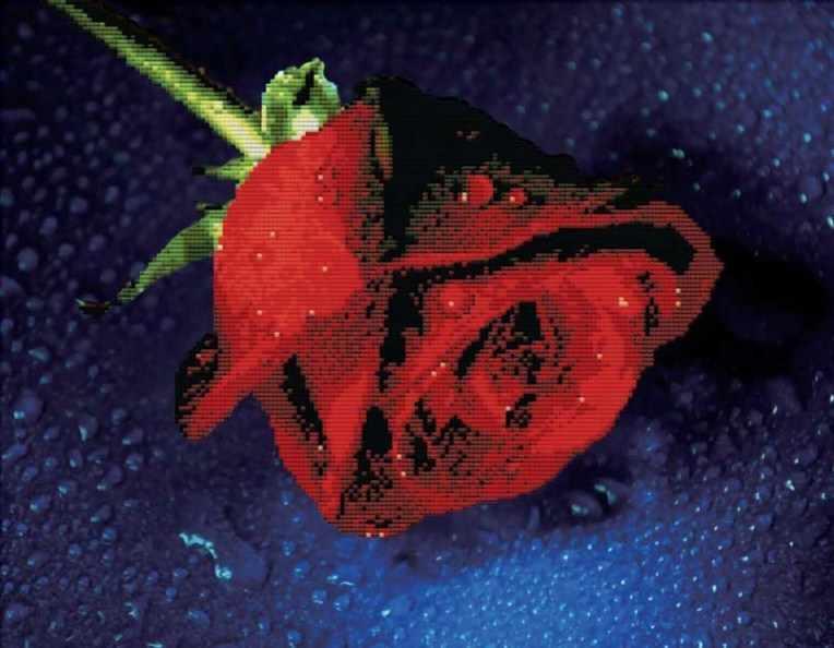 7003-3D Прекрасная роза (Белоснежка)
