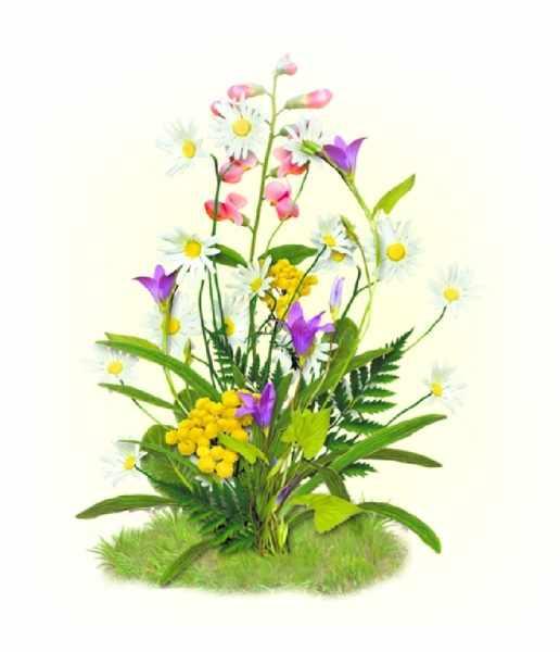 7026 Цветы полевые - набор для вышивания (МП)