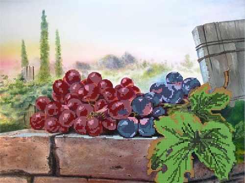 70302 Виноград