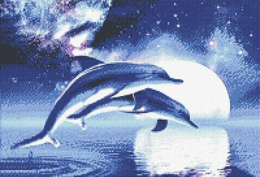 71011,01 Дельфины - мозаика Anya
