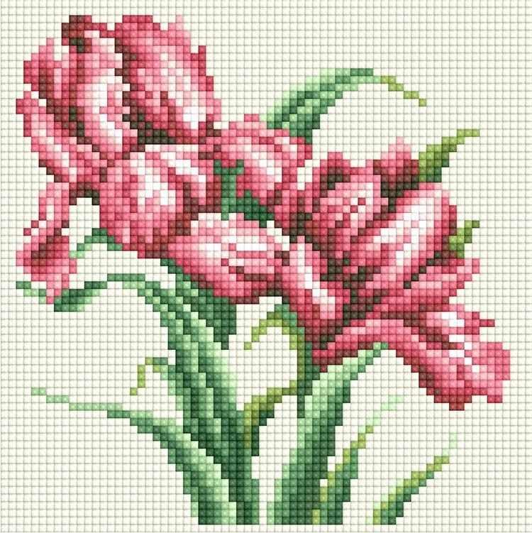 71085,07 Красные ирисы- мозаика Anya