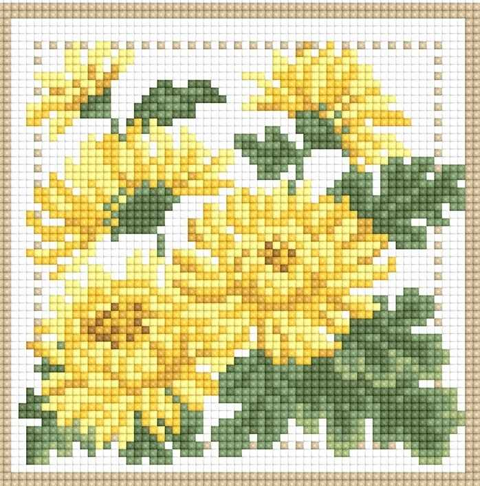 71085,31 Хризантема - мозаика Anya