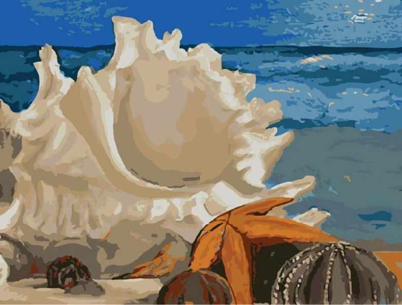 735-AS Морская ракушка - раскраска (Белоснежка)