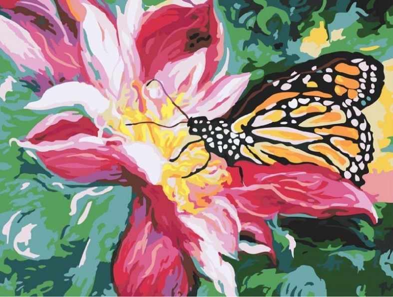736-AS Сладкий нектар - раскраска (Белоснежка)