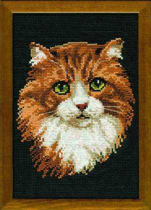 765 «Рыжий кот»