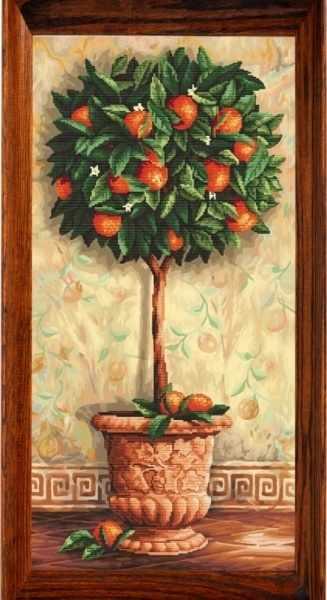 80002 Апельсиновое дерево