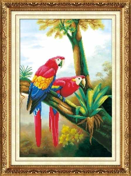 80118 Цветные попугаи