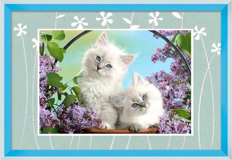 80446 Белые котятки (Honey home)