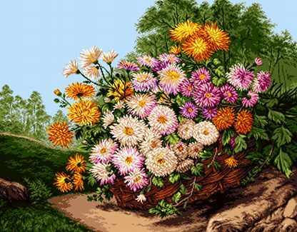 858 Корзина хризантем (Baschet of chrysanthemums)