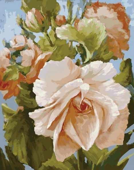 889-АВ Роза - раскраска (Белоснежка)
