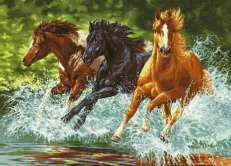 891 Лошади в галопе
