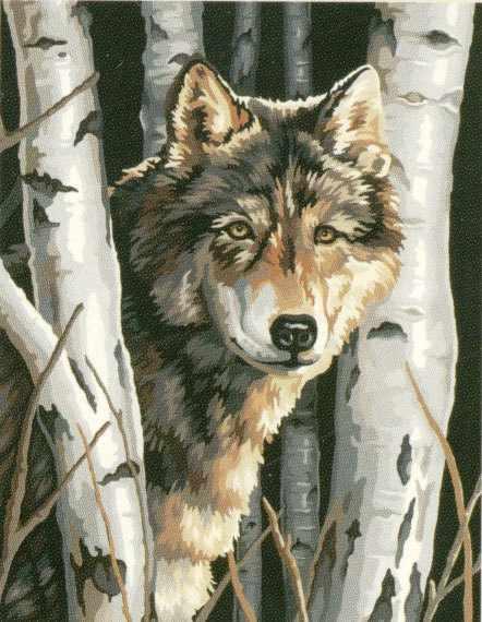 """91254 DMS """"Волк в деревьях"""" - раскраска"""